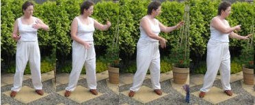 images showing of TaiChi movement