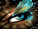 butterflyeye